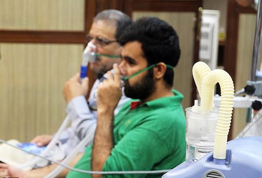 اعلام مجدد نگرانی علوم پزشکی اهواز از هرس نشدن کنوکارپوسها